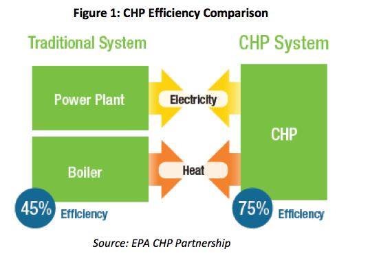 Energy Manage CHP