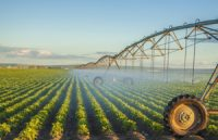 Smart and Drip Irrigation Offer Energy Savings
