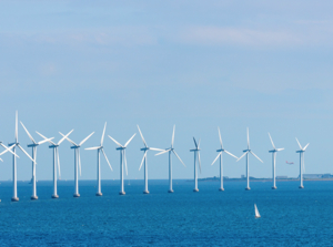 Energy Manage Offshore wind farm